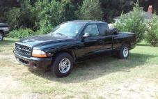 1999 Dodge Dakota Base