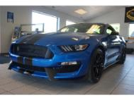 2019 Ford Mustang GT 350 / Shelby