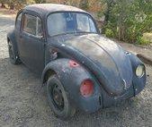1969 Volkswagen Beetle Classic